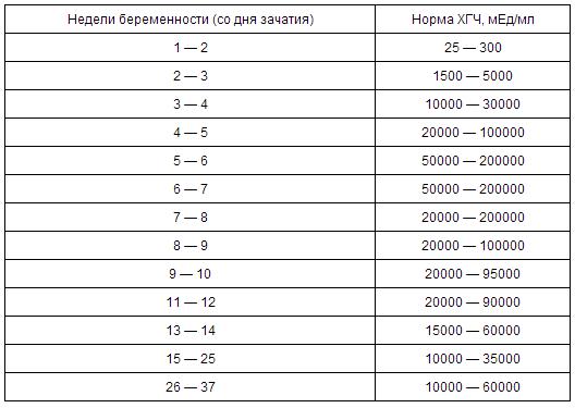 Беременность по дням и неделям таблица