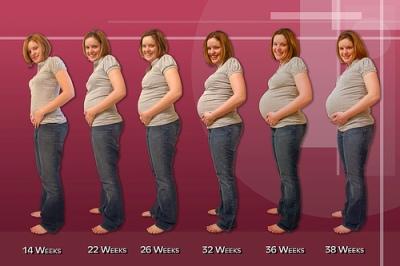 Вынашивания младенца 40 недель
